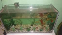 Vendo aquário ou troco leia!!!