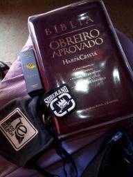 Título do anúncio: BÍBLIA OBREIRO APROVADO NOVA