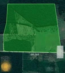 Fazenda de 90 alqueires, com 60 aberto 20 km de Guarantã do Norte -MT
