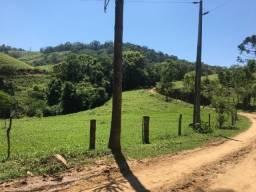 Fazenda Vargedo - Castro/PR