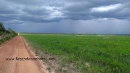 Fazenda 12.250 Ha na Barra do Corda - MA