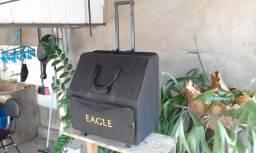 Acordeon eagle