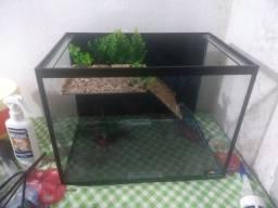 Aquaterrario 30 litros
