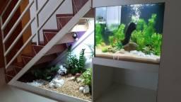 Projetos e Instalação de Jardins, terrários temáticos, aquários em baixo de escadas