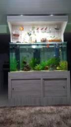 Aquario Jumbo