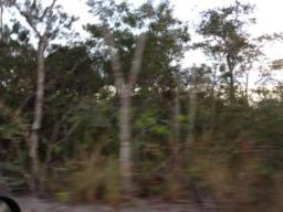 Área de terra para compensação ambiental (reserva