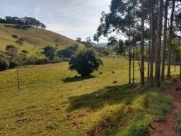 (TB) Fazenda em Minas Gerais