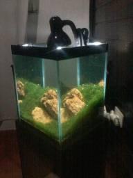 Aquario plantado completo aceito ofertas