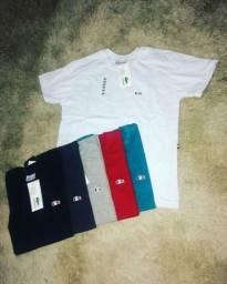 Camisas Básica fio 30 luxo
