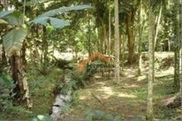 Sítio com 3 dormitórios à venda, 48400 m² por R$ 700.000,00 - Ribeirão Grande - Pindamonha