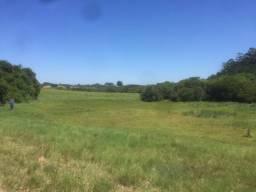 Sítio 12 hectares- Passo do Vigário