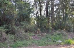 Terreno à venda, 720 m² por R$ 200.000,00 - Vale dos Pinheiros - Gramado/RS