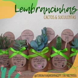Lembrancinhas - Cactos e Suculentas
