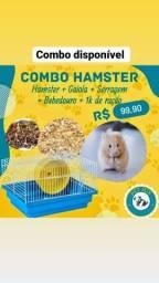 Título do anúncio: Ótimo presente para o dia das crianças.  Combo hamster + gaiola nova  99,90