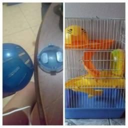 Gaiola e bola para hamster e pequenos roedores
