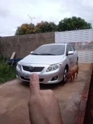 Corolla 2008/2009 - 2009