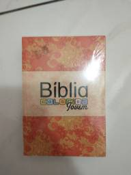 Bíblia colorida jovem da Bvbooks