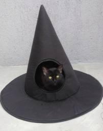 Casinha pet  chapéu de bruxa