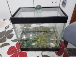 Aquário para peixes BETA
