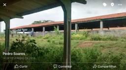 Alugo ou vendo fazenda em taperoa R 4000