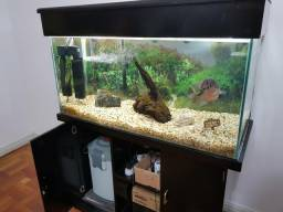 Aquario Completo 200lt