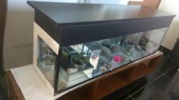 Aquário + Filtro + Aquecedor (mesa de suporte opcional)