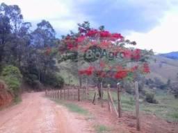 Sementes de Ipe Vermelho