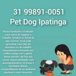 Hotel para animais de estimação em Ipatinga