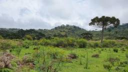 Fazenda em Urubici