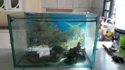 Aquaria 60 litros