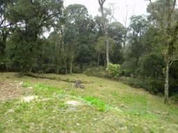 Terreno à venda, 1153 m² por R$ 380.000,00 - Centro - Gramado/RS