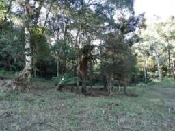 Terreno à venda, 463 m² por R$ 339.200,00 - Vivendas Do Arvoredo - Gramado/RS