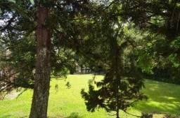 Terreno residencial à venda, vila suzana, canela.