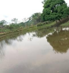Vendo 17 hectares após o ramal alcoobras