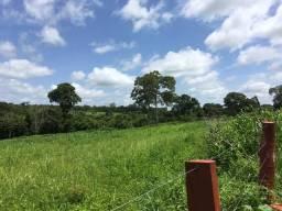 Fazenda Paraiso do Tocantins