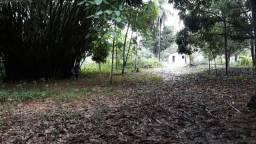 Vende-se Sitio no município de capitão poço no Jararaca a 7 km da Cidade valor 150.000