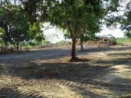 Fazenda 4.286 Hectares Paragominas PA Permuta Fazenda Parana e MTS