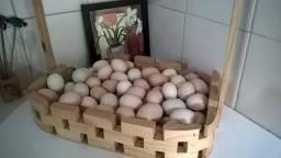 Ovos caipira, e galinhas para abate