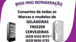Consertos de geladeiras, expositores,freezers bigg frio
