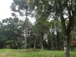 Terreno à venda, 8070 m² por R$ 6.000.000,00 - Tirol - Gramado/RS