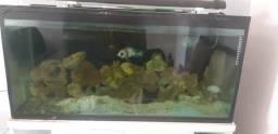 Vendo aquário completo 190 litros