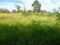 Terreno rural, sítio, fazenda para arrendar em MG, Sete Lagoas a 50km de BH