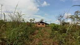Vendo fazenda de 9 alqueires em Araguacema