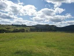 Fazenda com 113 hectares à venda em Urupema
