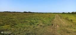 3 Hectares de terras para plantação, criação de animais ou pescaria