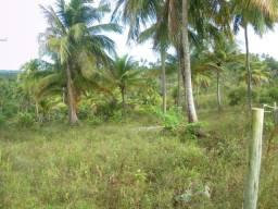 Vendo 10 000 m2 terreno em Diogo Com Escritura