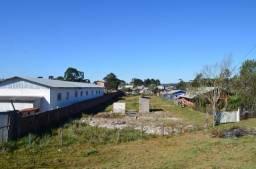 Terreno residencial à venda, canelinha, canela.