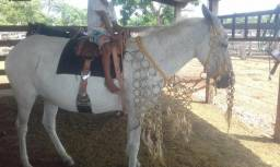 Tralha de cavalgada r$1300
