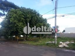 Terreno para alugar em Jardim karaíba, Uberlândia cod:523899