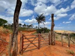Título do anúncio: Vendo sítio em Caririaçu